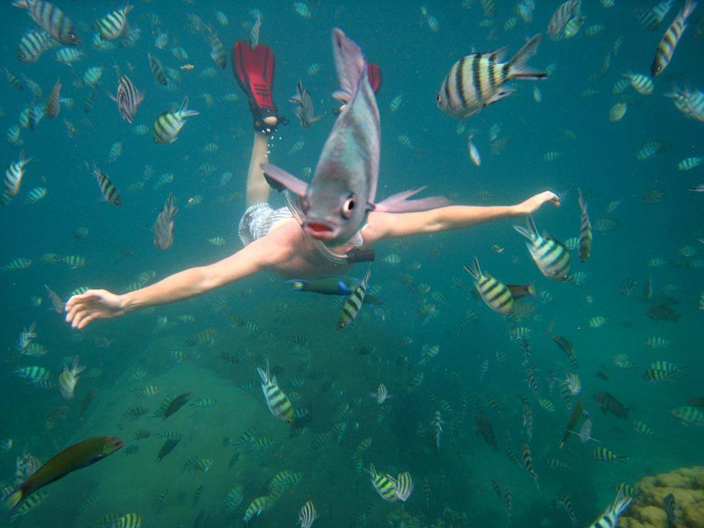 snorkeler-underwater-thailand-Nick Kelly