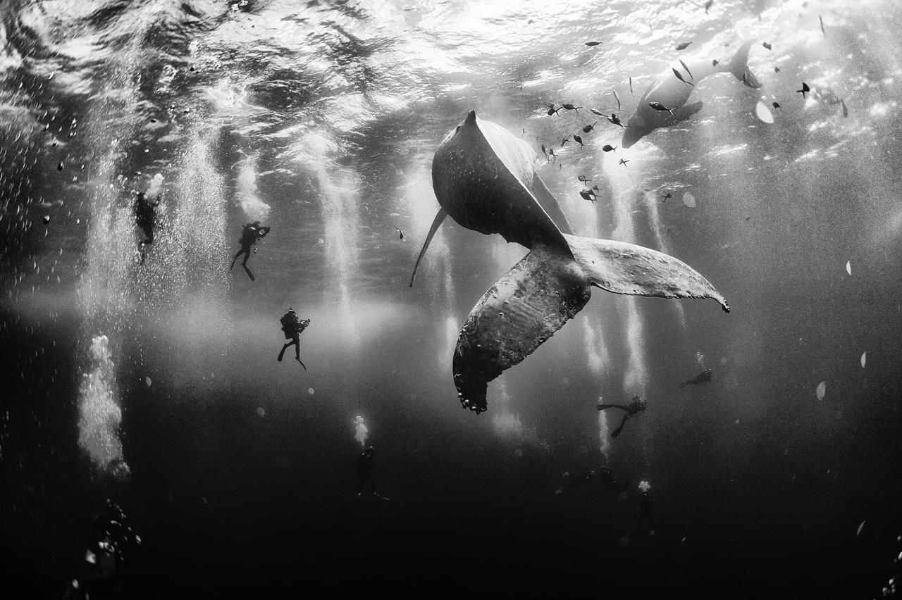 Photo  Anuar Patjane Floriuk