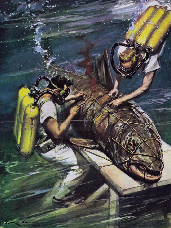 Walter Molino :  des plongeurs qui découpent sous l'eau un poisson géant (gageons qu'il a dans le ventre un petit bébé)